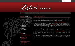 Zatori Website Screen Grab